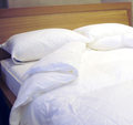 HOTEL REGENCY COLLECTION - Duvets