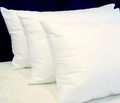 HRC - ZenFibre (synthetic) Pillow
